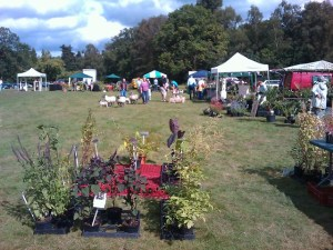 Hamptworth Plant Fair