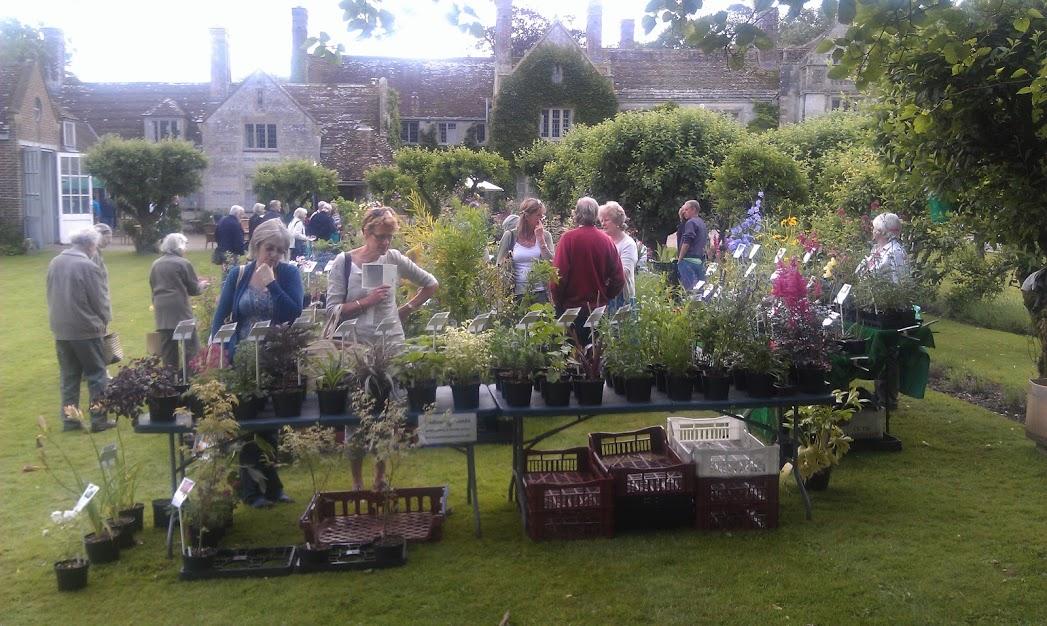 Dgt Waterston Manor July 12 3 Paddock Plants Update