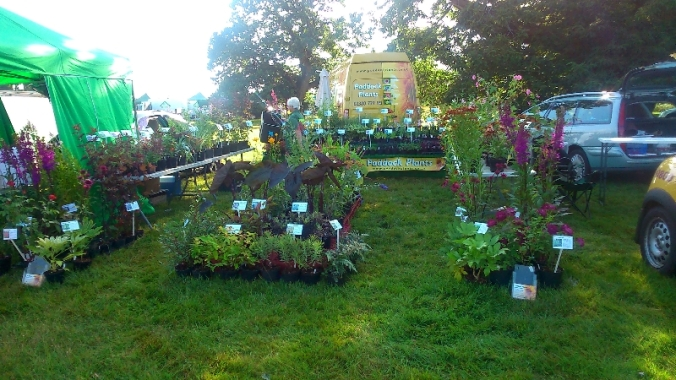 Paddock Plants at the Ellingham Show
